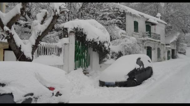 Снег в Тунисе
