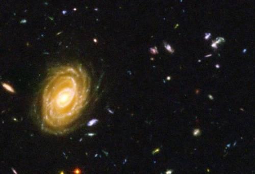 Ученые из NASA сообщили об уникальном открытии в галактике Андромеда